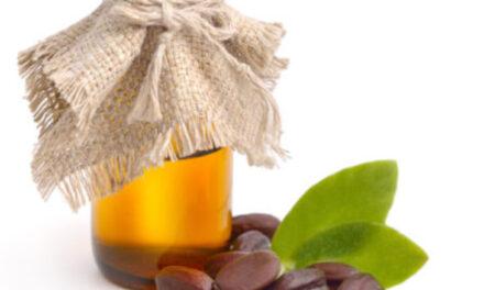 Balsam für Haut & Haar
